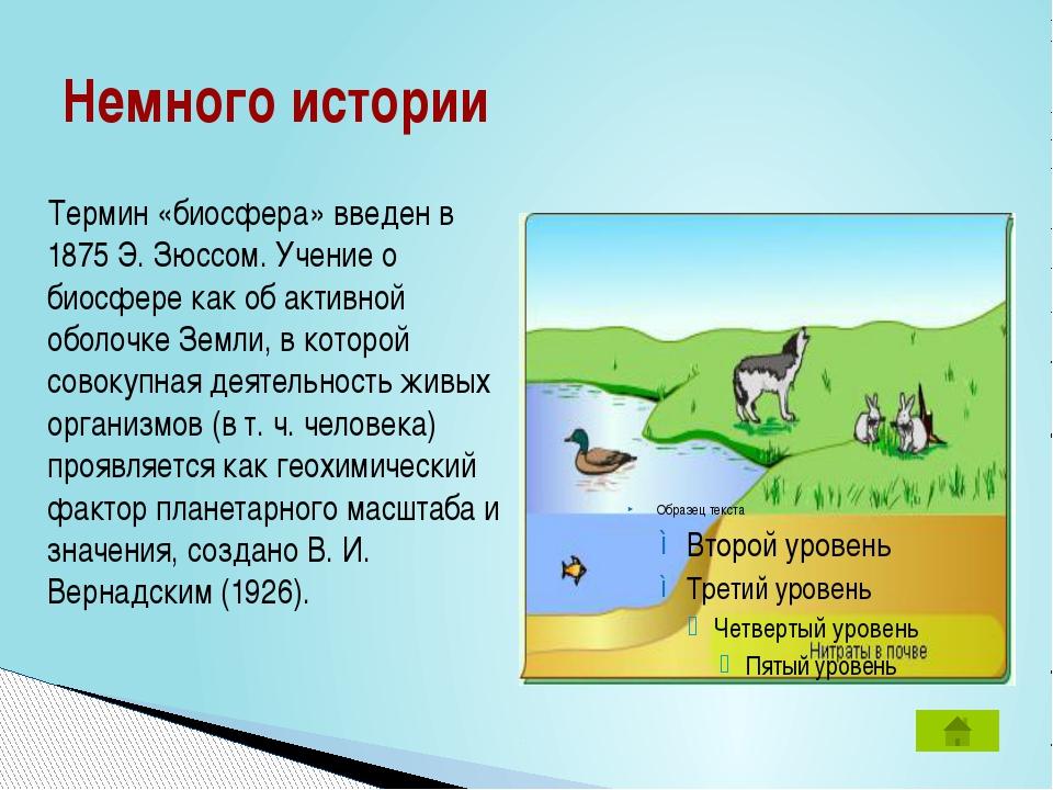 Немного истории Термин «биосфера» введен в 1875 Э. Зюссом. Учение о биосфере...