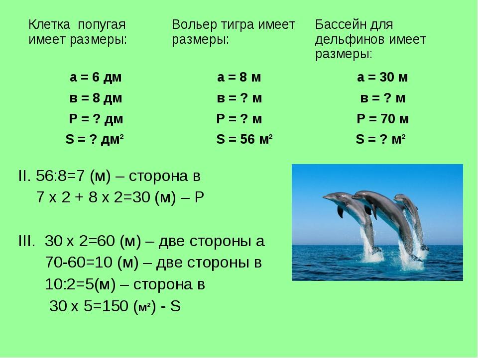II. 56:8=7 (м) – сторона в 7 х 2 + 8 х 2=30 (м) – Р III. 30 х 2=60 (м) – две...
