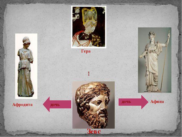 Афродита Гера Афина Зевс дочь дочь жена
