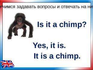 Is it a chimp? Yes, it is. Учимся задавать вопросы и отвечать на них It is a