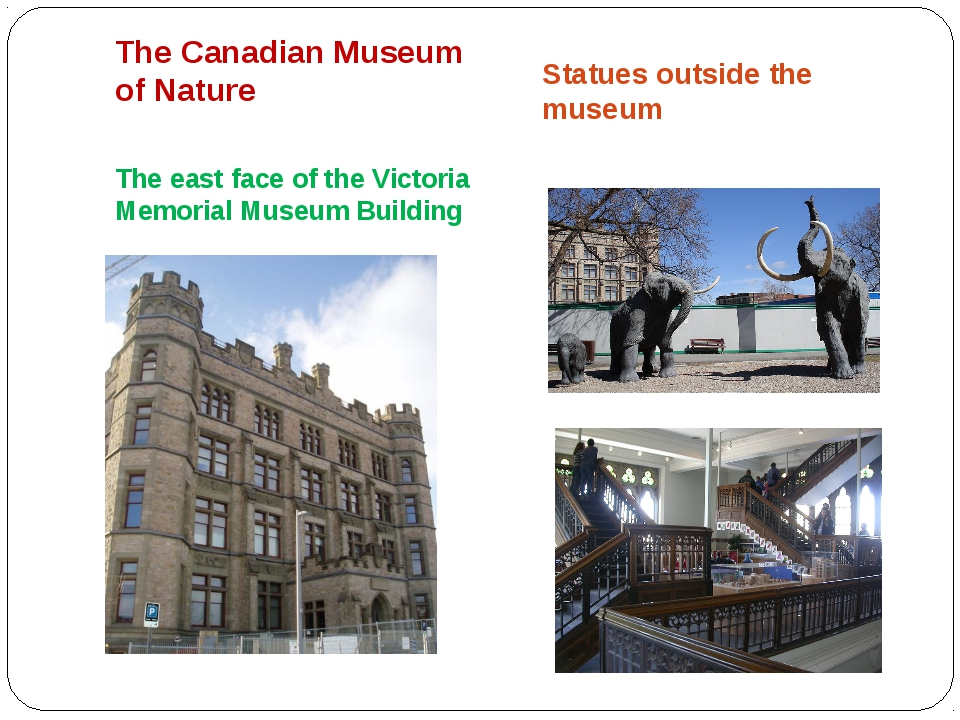 The Canadian Museum of Nature The east face of the Victoria Memorial Museum...
