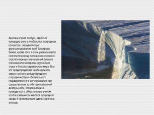 Арктика играет особую, одной ей присущую роль в глобальных природных процесса
