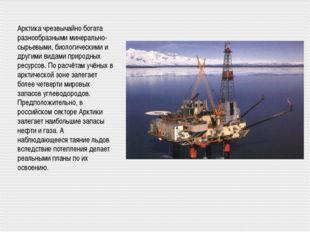 Арктика чрезвычайно богата разнообразными минерально-сырьевыми, биологическим