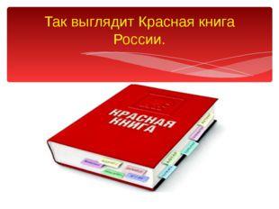 Так выглядит Красная книга России.