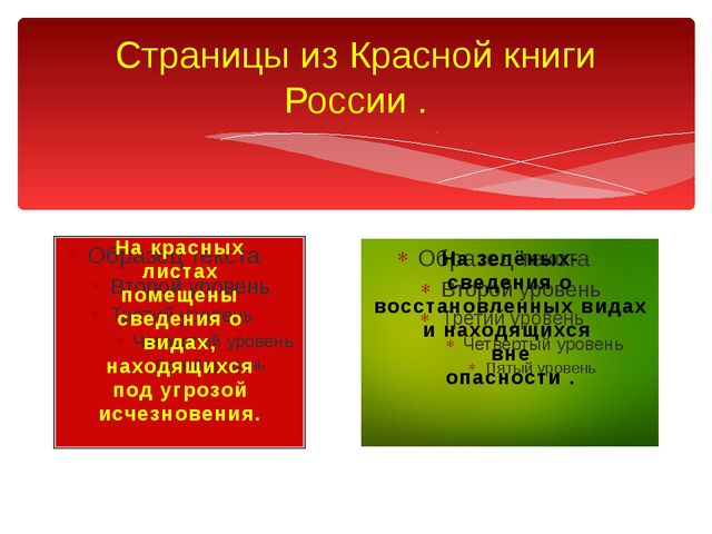 Страницы из Красной книги России . На красных листах помещены сведения о вида...