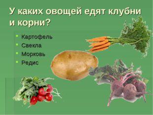 У каких овощей едят клубни и корни? Картофель Свекла Морковь Редис