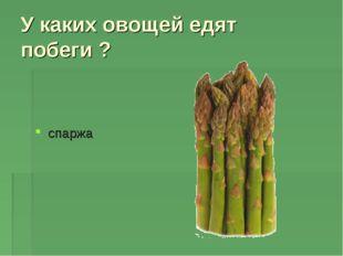 У каких овощей едят побеги ? спаржа