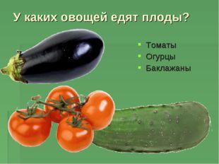 У каких овощей едят плоды? Томаты Огурцы Баклажаны