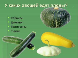 У каких овощей едят плоды? Кабачки Цуккини Патиссоны Тыквы