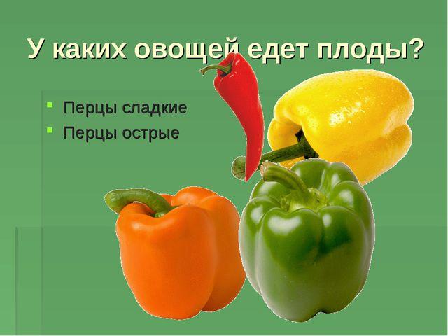У каких овощей едет плоды? Перцы сладкие Перцы острые