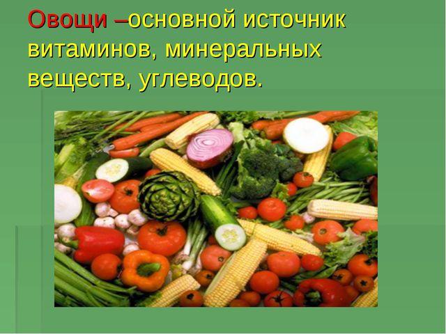 Овощи –основной источник витаминов, минеральных веществ, углеводов.