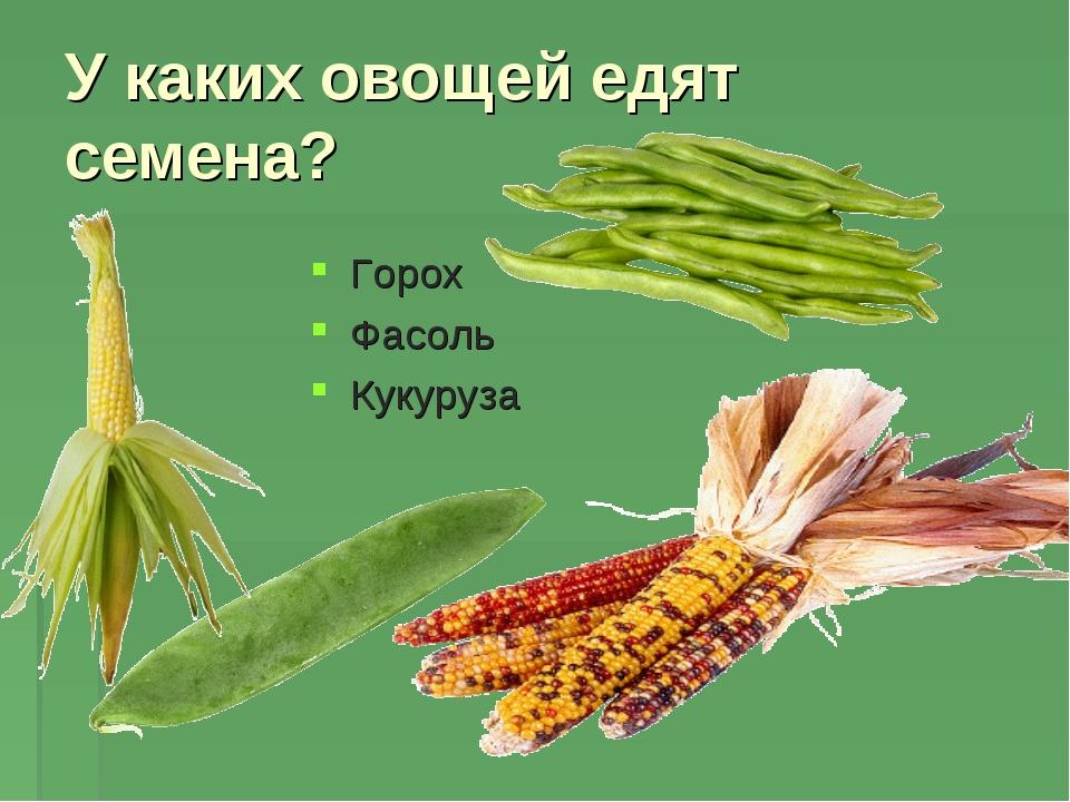 У каких овощей едят семена? Горох Фасоль Кукуруза