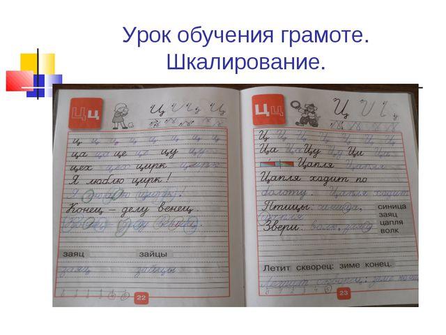 Урок обучения грамоте. Шкалирование.