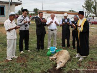 """Перед тем, как резать животное, над ним читают специальную молитву. МБОУ """"Вод"""