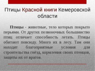 Птицы Красной книги Кемеровской области Птицы - животные, тело которых покрыт