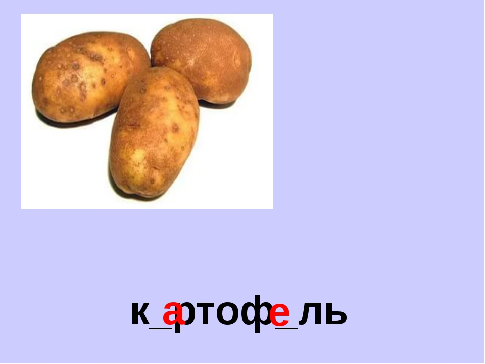 к_ртоф_ль а е