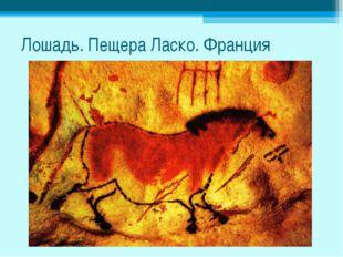 Лошадь. Пещера Ласко. Франция