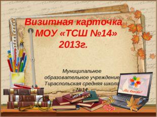 Муниципальное образовательное учреждение Тираспольская средняя школа №14 201