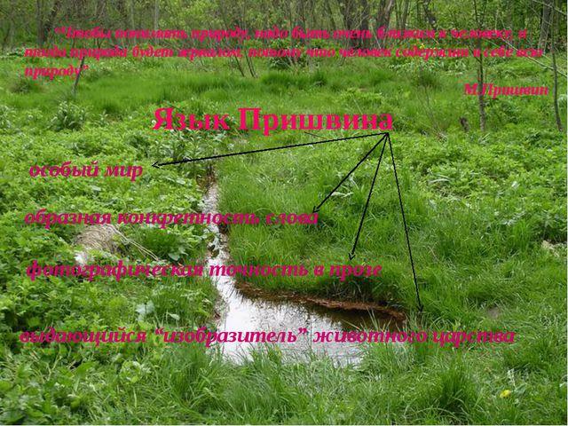 Язык Пришвина особый мир образная конкретность слова фотографическая точность...