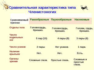 Сравниваемый признак Сравнительная характеристика типа Членистоногих Сравнива