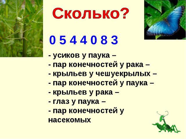 0 5 4 4 0 8 3 - усиков у паука – - пар конечностей у рака – - крыльев у чешуе...