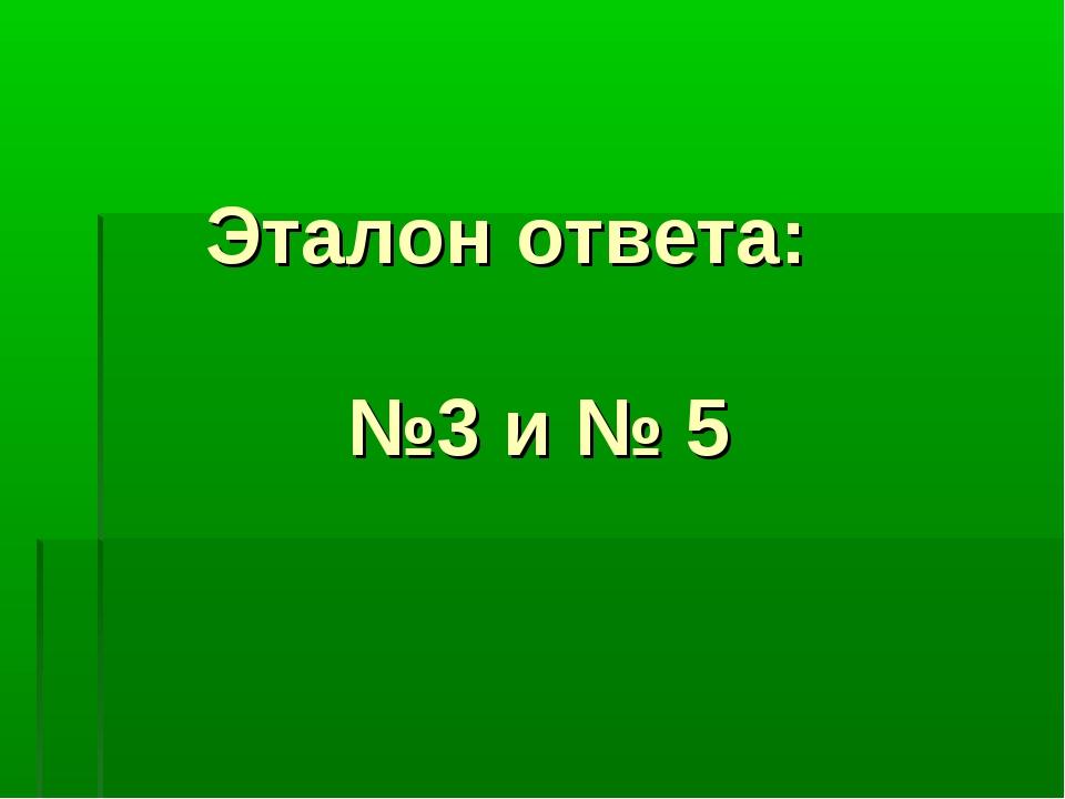 Эталон ответа: №3 и № 5