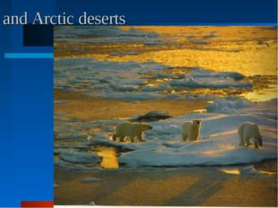 and Arctic deserts