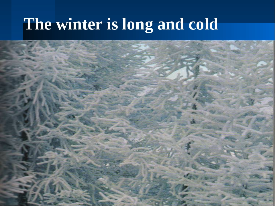 The winter is long and cold