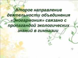 Второе направление деятельности объединения «Экогармония» связано с пропаганд