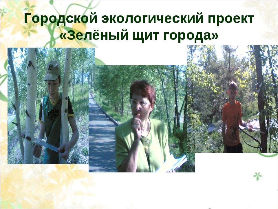 Городской экологический проект «Зелёный щит города»
