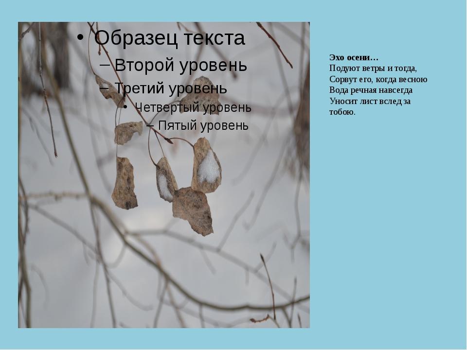 Эхо осени… Подуют ветры и тогда, Сорвут его, когда весною Вода речная навсегд...