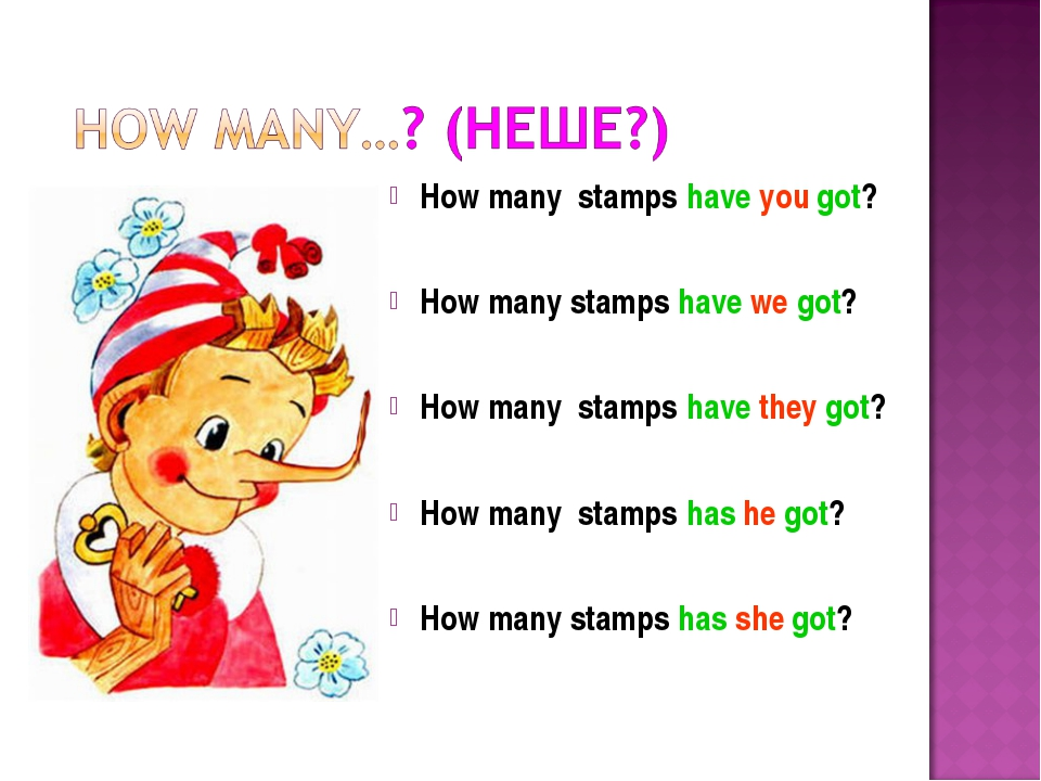 How many stamps have you got? How many stamps have we got? How many stamps h...