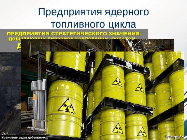 Предприятия ядерного топливного цикла