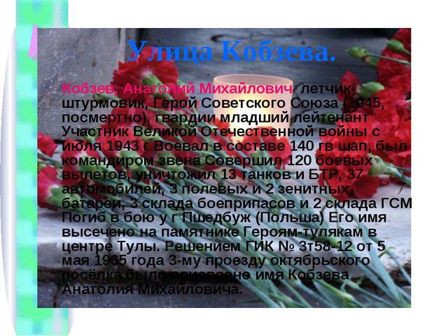 Улица Кобзева. Кобзев, Анатолий Михайлович летчик-штурмовик, Герой Советского...