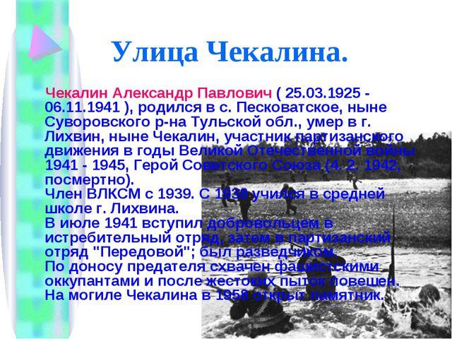 Улица Чекалина. Чекалин Александр Павлович ( 25.03.1925 - 06.11.1941 ), родил...