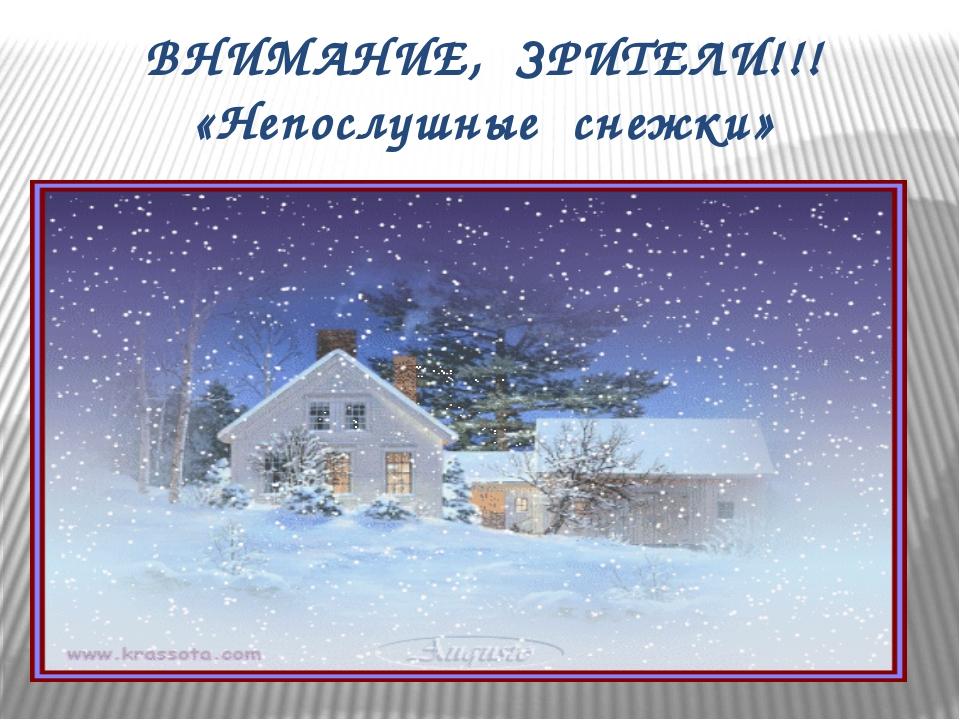 ВНИМАНИЕ, ЗРИТЕЛИ!!! «Непослушные снежки»
