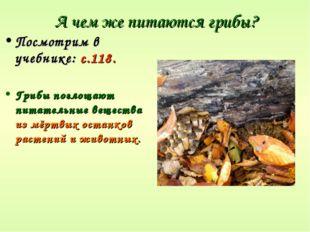 А чем же питаются грибы? Посмотрим в учебнике: с.118. Грибы поглощают питател