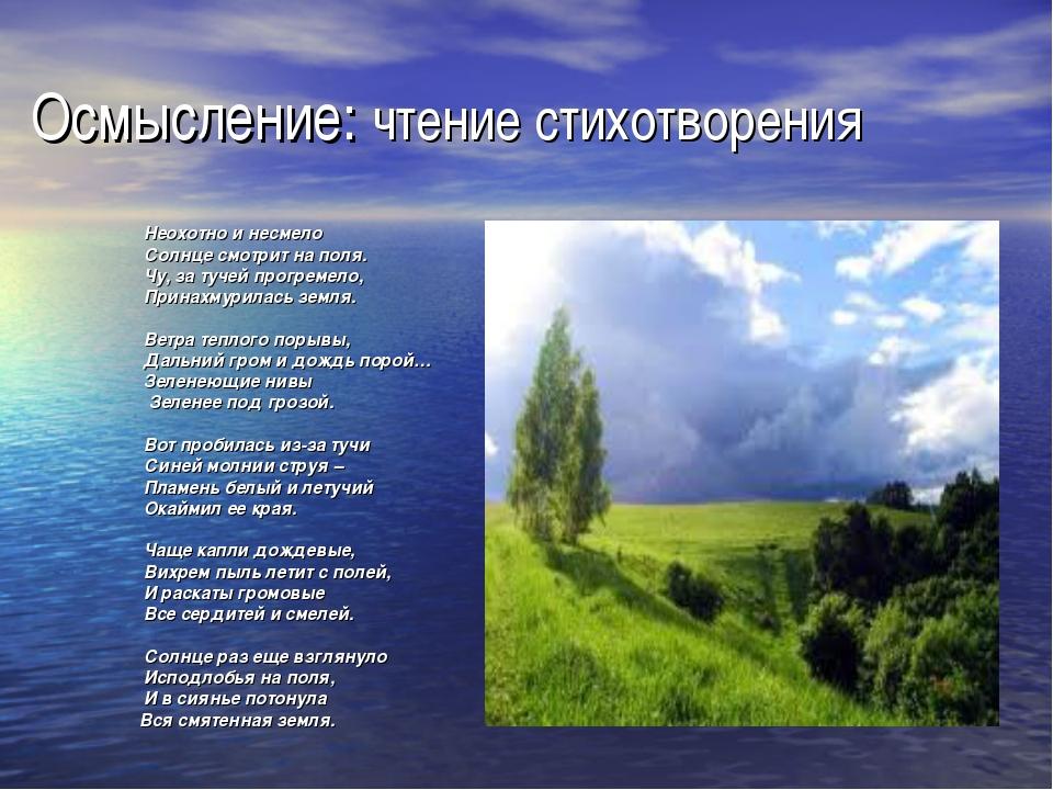 Осмысление: чтение стихотворения Неохотно и несмело Солнце смотрит на поля. Ч...