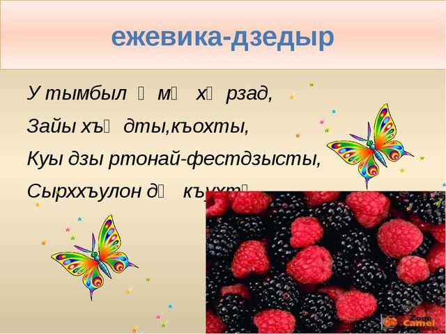 ежевика-дзедыр У тымбыл ӕмӕ хӕрзад, Зайы хъӕдты,къохты, Куы дзы ртонай-фестдз...