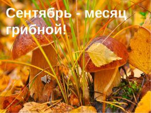 Сентябрь - месяц грибной!
