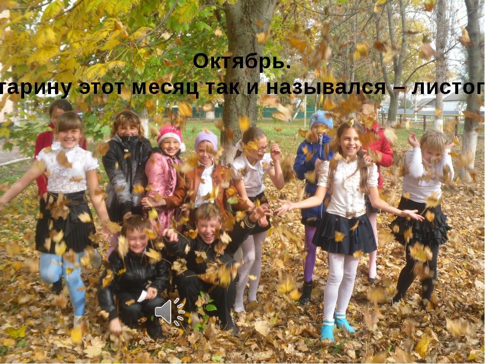 Октябрь. В старину этот месяц так и назывался – листопад.