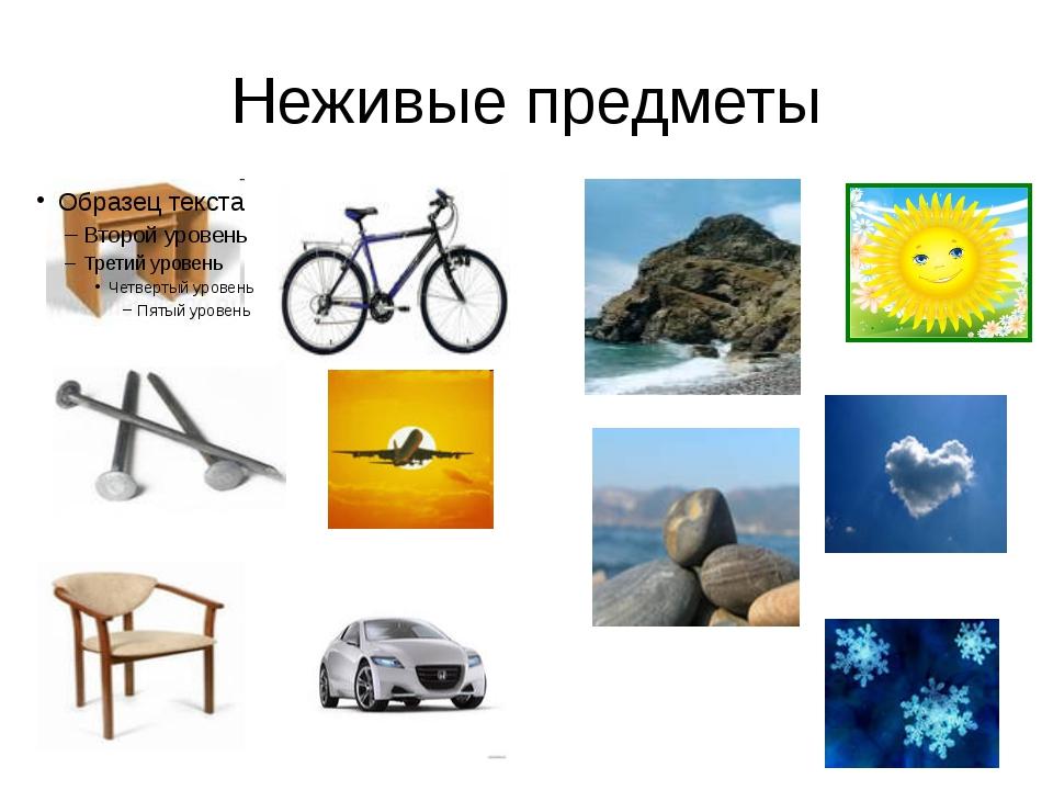 Неживые предметы