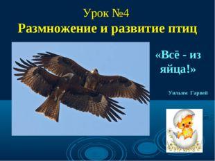 Урок №4 Размножение и развитие птиц «Всё - из яйца!» Уильям Гарвей