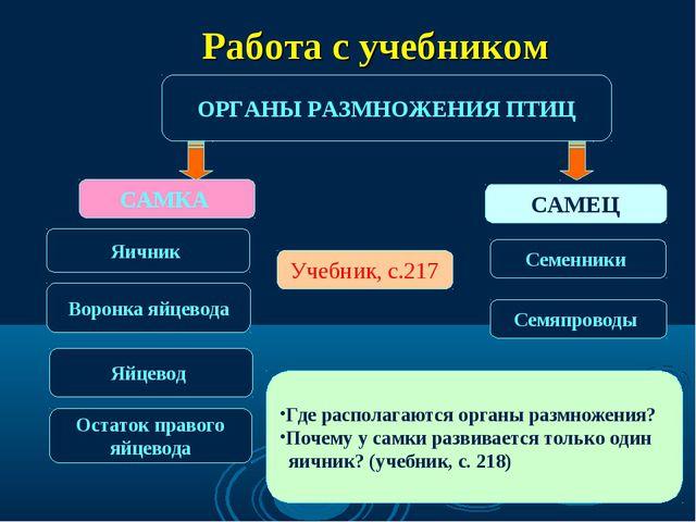 ОРГАНЫ РАЗМНОЖЕНИЯ ПТИЦ САМКА САМЕЦ Яичник Семенники Учебник, с.217 Воронка я...