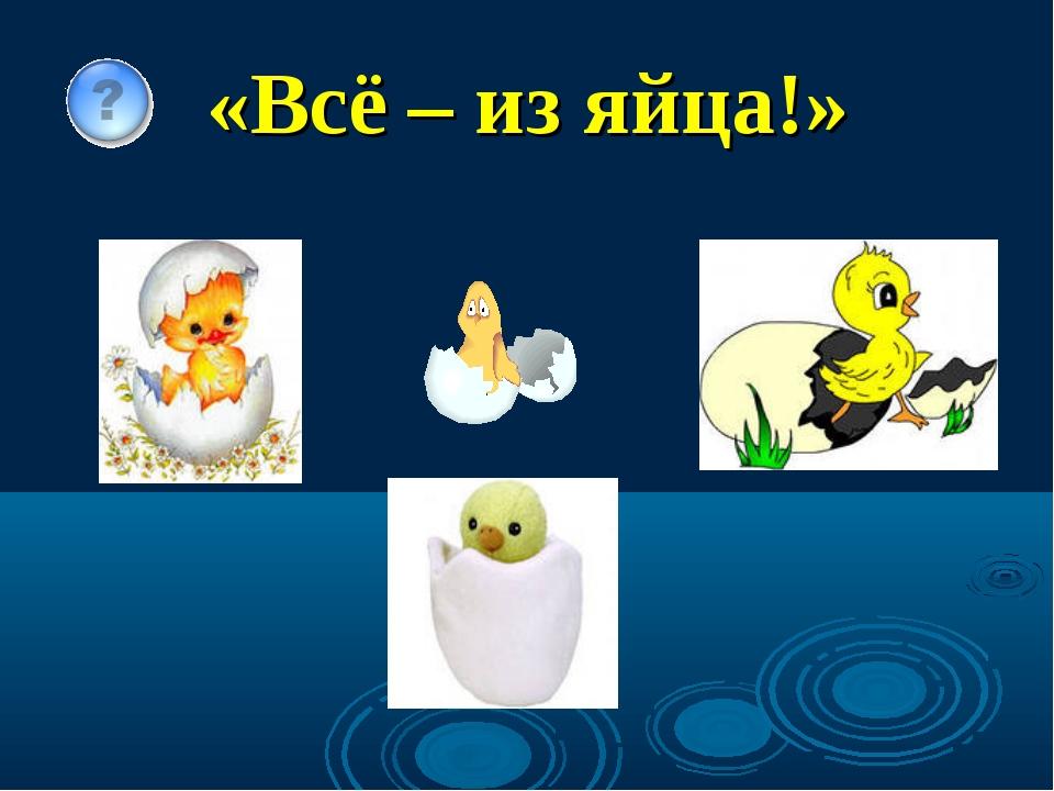 «Всё – из яйца!»