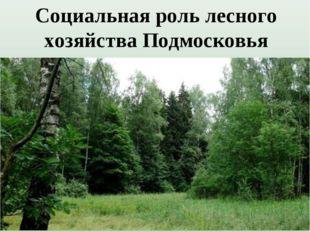 Социальная роль лесного хозяйства Подмосковья