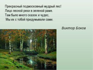 Прекрасный подмосковный мудрый лес! Лицо лесной реки в зеленой раме. Там было