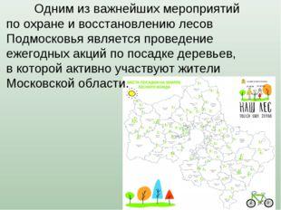 Одним из важнейших мероприятий по охране и восстановлению лесов Подмосковья