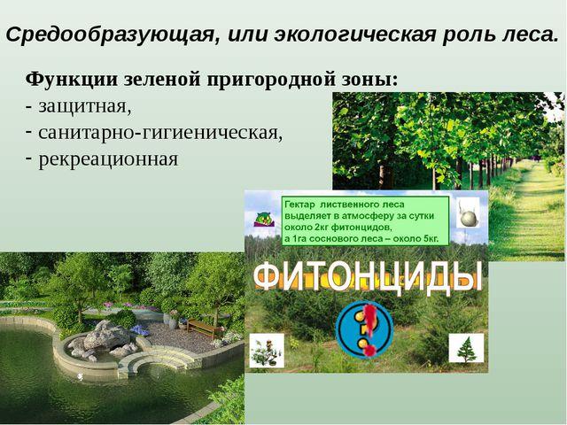Функции зеленой пригородной зоны: - защитная, санитарно-гигиеническая, рекреа...