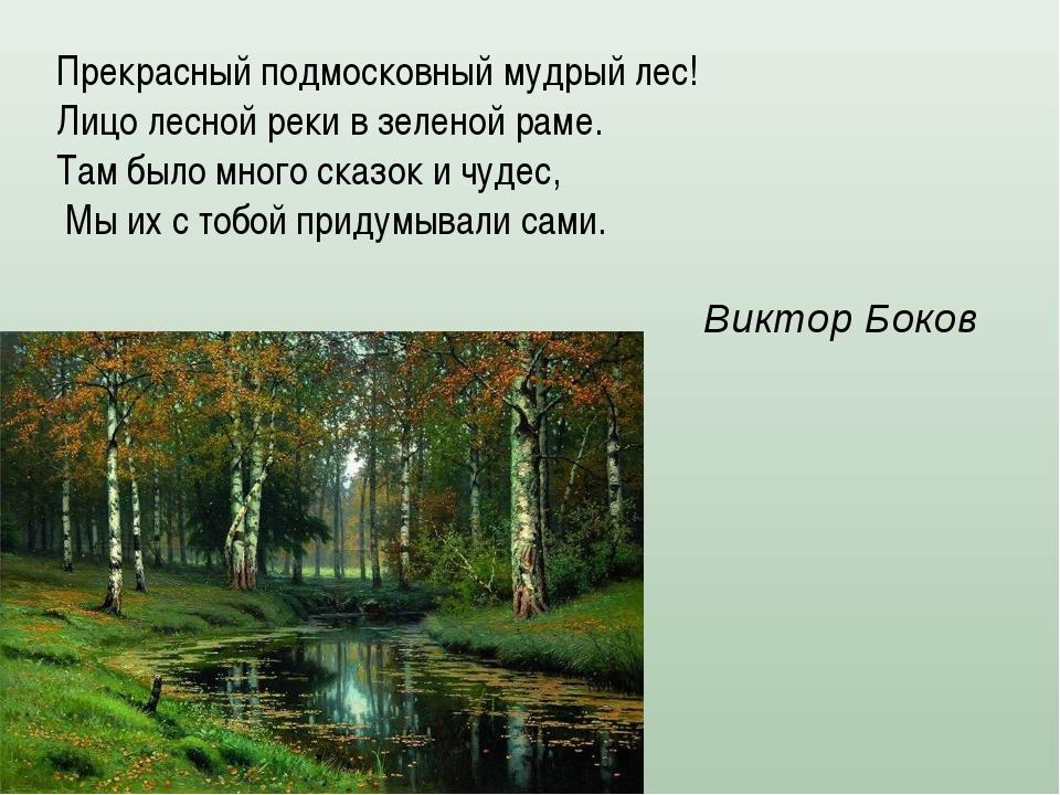 Прекрасный подмосковный мудрый лес! Лицо лесной реки в зеленой раме. Там было...